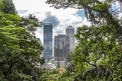 Nowożytny miasto otaczający dżunglą Fotografia Royalty Free