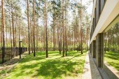 Nowożytny minimalisty dom w lesie obraz stock