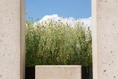 Nowożytny ogrodowy projekt, ściana betonowi bloki z okno, rywalizuje Zdjęcia Stock