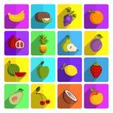 Nowożytny owocowy wektorowy ikona set Zdjęcie Royalty Free