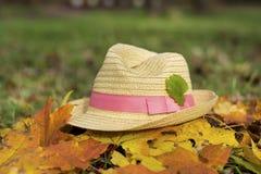 Nowożytny słomiany kapelusz w jesień ogródzie Zdjęcia Stock