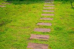 Nowożytny Stylowy ścieżka sposób z trawą Zdjęcie Stock