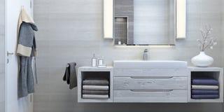 Nowożytny wewnętrzny projekt łazienka Obrazy Stock