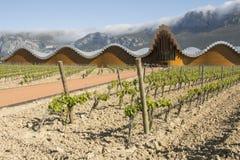 Nowożytna wytwórnia win Ysios w Laguardia, Baskijski kraj, Hiszpania Zdjęcia Stock