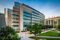 Nowożytni budynki przy Massachusetts Institute Of Technology, i Zdjęcie Royalty Free