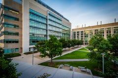 Nowożytni budynki przy Massachusetts Institute Of Technology, i Zdjęcie Stock