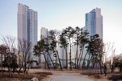 Nowożytni Wysocy wzrostów mieszkania zdjęcie stock