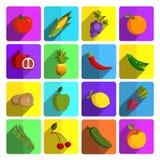 Nowożytnych owoc i warzywo ikony wektorowy set Zdjęcie Stock