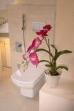 nowoczesna do łazienki Fotografia Royalty Free