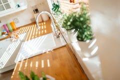 nowoczesny zlew w kuchni Fotografia Stock