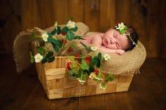 Nowonarodzona dziewczynka słodkich sen w truskawkach Obrazy Stock