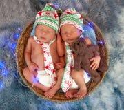 Nowonarodzone bliźniacze chłopiec śpi w koszu Obraz Royalty Free