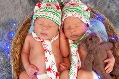 Nowonarodzone bliźniacze chłopiec śpi w koszu Zdjęcia Royalty Free