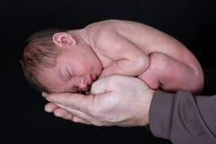 nowonarodzone ojciec kołysane ręki Zdjęcia Royalty Free