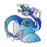 Nowonarodzony błękitny azjatykci smok na bielu Fotografia Royalty Free