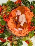Nowonarodzony dziecka dosypianie w koszu Zdjęcia Royalty Free