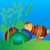 Kurczak w barwionym estrowym jajku ilustracji