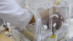 Nowonarodzony w macierzyńskim kliniki pojęciu Zakończenie w górę doktorskich ręk ustawia palcowych czujniki dziecięca palma w ink zbiory wideo