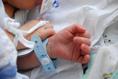 noworodek Fotografia Royalty Free