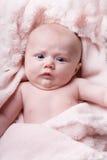 noworodek portret Obraz Royalty Free