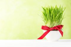 Nowruz holiday concept - grass, baklava sweets, nuts and seeds. Copy space stock images