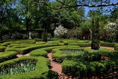 Nowy Bern, NC: 1770 Tryon pałac kępki ogród obraz royalty free
