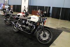 Nowy brytyjski motocykl Fotografia Royalty Free