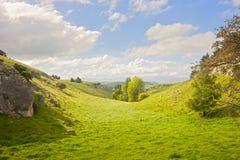 nowy dolinny cudacki Zealand Obrazy Royalty Free