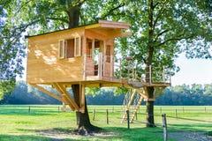 Nowy drewniany drzewny dom w dębowych drzewach zdjęcia royalty free
