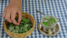 Nowy herbaciany napój zbiory