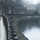 Nowy Jork las Zdjęcia Stock