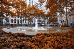 Nowy Jork, usa †'Sierpień 24, 2018: Kręgle zieleni jawny park wewnątrz obrazy royalty free