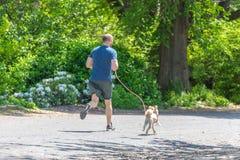 NOWY JORK, usa - 15 MAJ, 2019: Jogger bieg wzd?u? central park rezerwuaru w Nowy Jork Central Park foluje aktywny fotografia royalty free