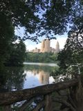 Nowy Jork wierzchołka central park most fotografia royalty free