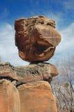 Nowy - Mexico krajobrazu szczegół Obraz Royalty Free