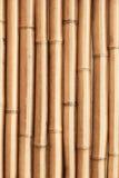 Nowy olśniewający bambus ściany vertical tło Obrazy Royalty Free