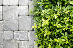 Nowy projekt nowożytna ściana Zdjęcie Royalty Free