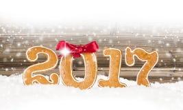 Nowy rok 2017 Zdjęcia Stock