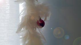 Nowy rok dekoracja z białymi piórkami i czerwoną piłką fotografia stock