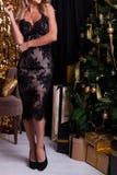 Nowy Rok mody trendy zdjęcie stock