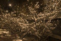 Nowy rok przychodził wraz z śniegiem obrazy royalty free