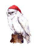 Nowy rok sowy biały ptak w czerwonym Santa kapeluszu watercolour ilustracja wektor