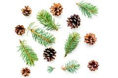 Nowy rok symboli/lów wzór Świerczyna rozgałęzia się i konusuje na białego tła odgórnym widoku Obrazy Royalty Free