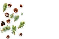 Nowy rok symboli/lów wzór Świerczyna rozgałęzia się i konusuje na białym tło odgórnego widoku copyspace Zdjęcie Royalty Free