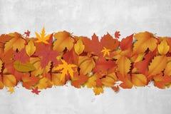 Nowy słodki jesieni tło Zdjęcie Royalty Free