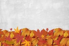 Nowy słodki jesieni tło Zdjęcia Royalty Free