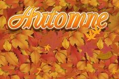 Nowy słodki jesieni tło Zdjęcia Stock