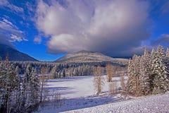 NOWY SPADAĆ śnieg Obraz Royalty Free