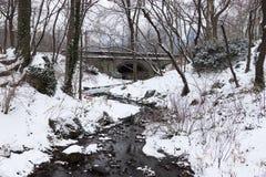 Nowy York zimy krajobraz przy centrala parkiem Obrazy Stock