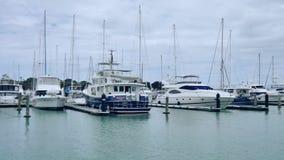 Nowy Zealand Auckland bayswater marina zdjęcie wideo